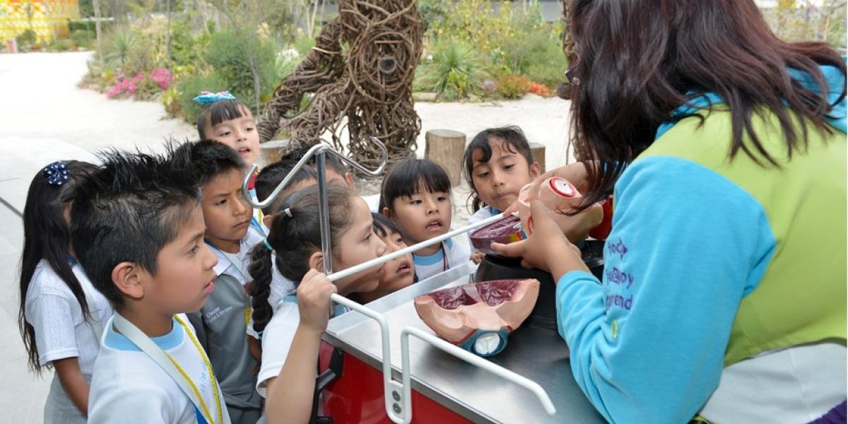 Diversión y aprendizaje, actividades especiales de los museos el Día del Niño