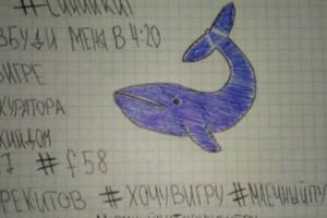 Nueva denuncia por 'la ballena azul' en Chile: niña de 13 años tenía cortes en sus brazos y 'jugaba' con compañeras