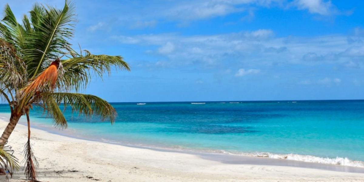 Cuatro playas de la Isla contaminadas