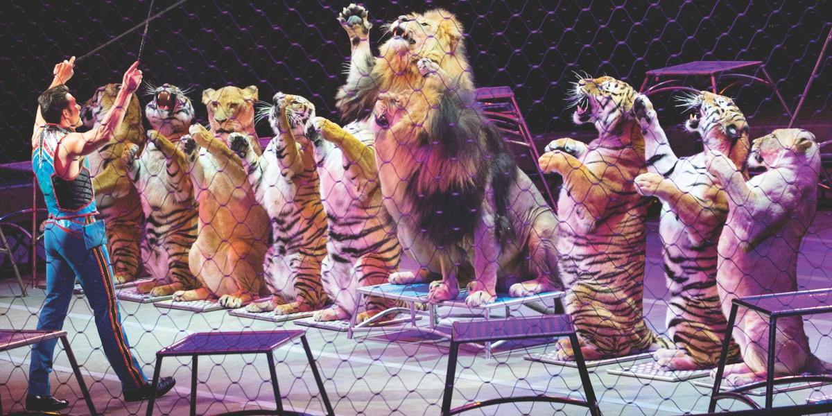 El circo Ringling Brothers se prepara para cerrar sus puertas