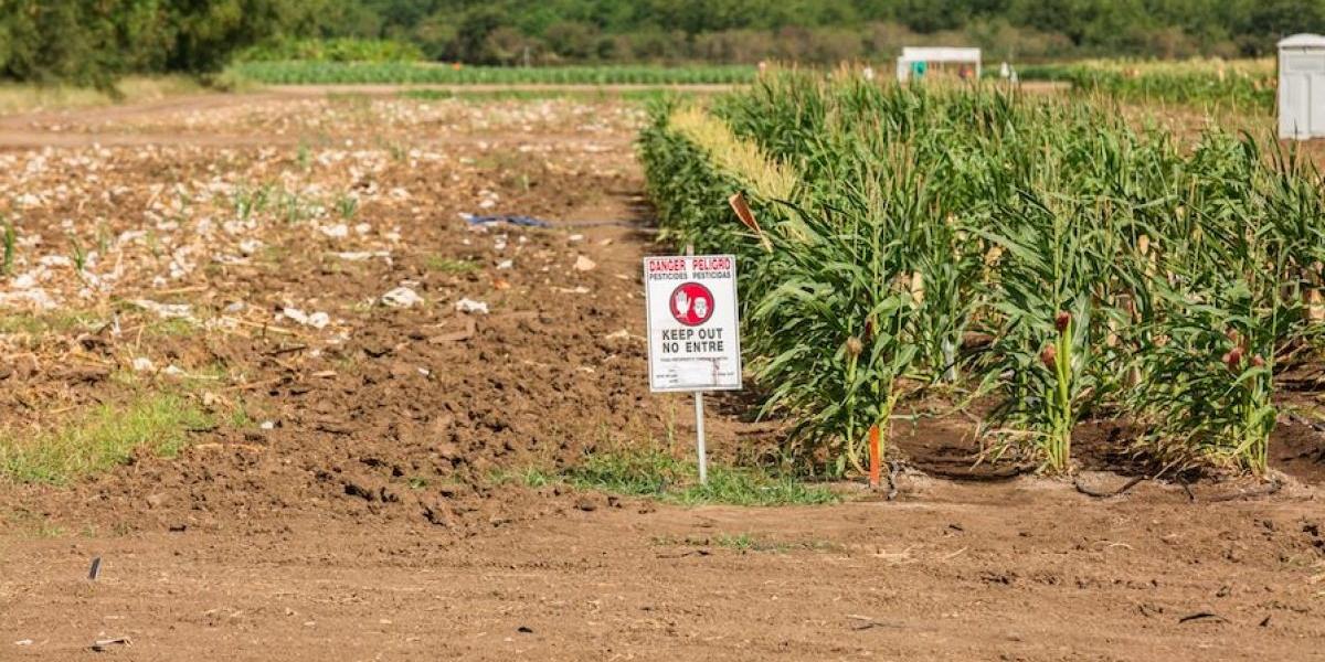 Agricultores rechazan participar del paro de mañana