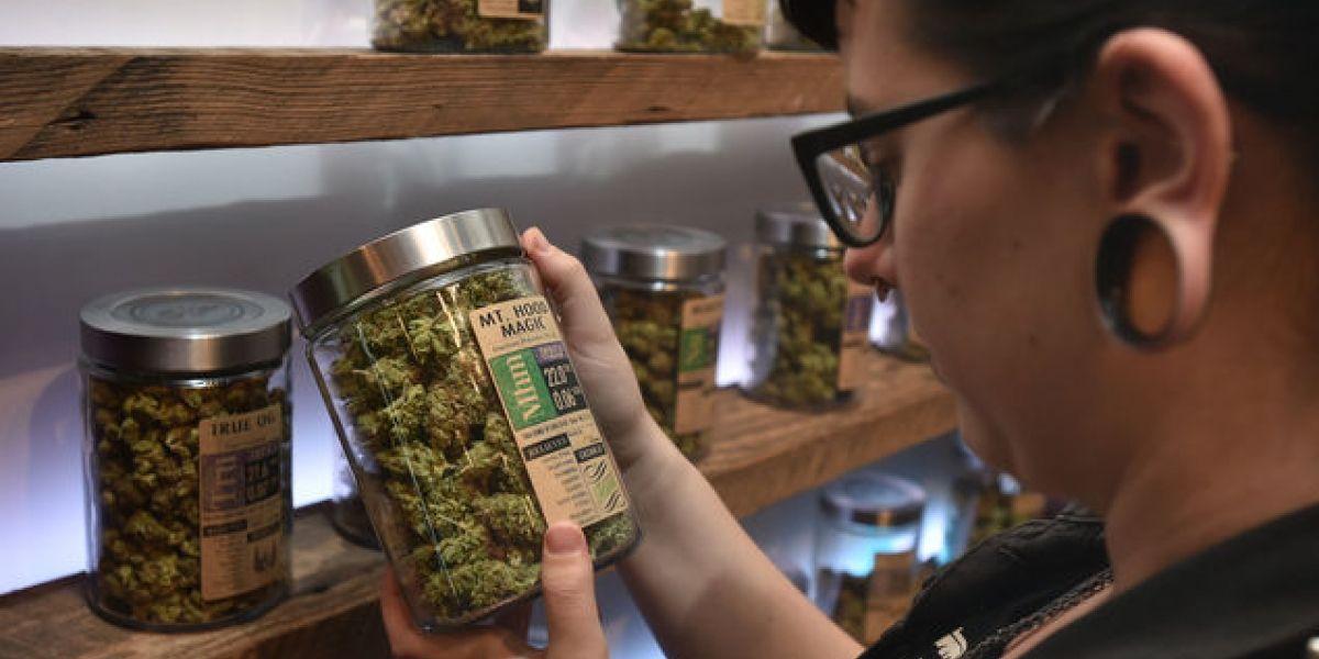 Uruguay comienza el registro para comprar marihuana en farmacias