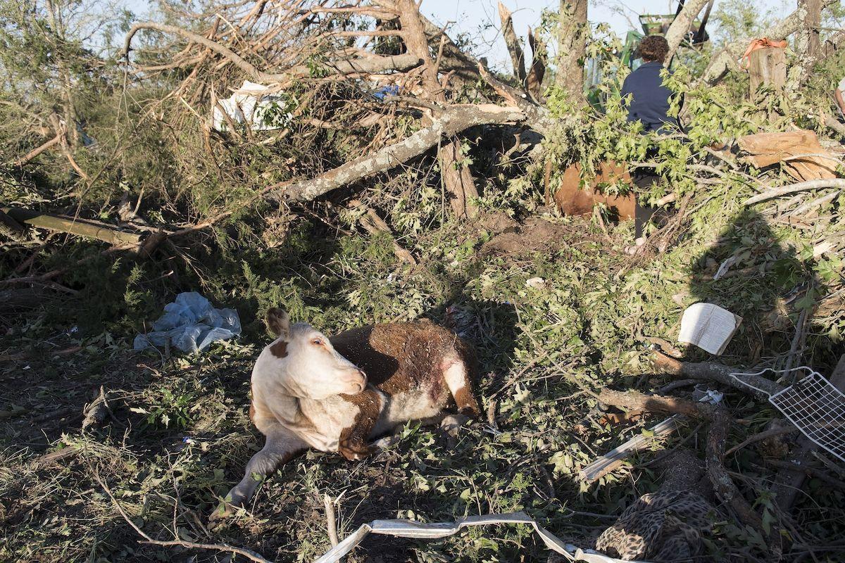 Inundaciones en Texas | Foto: AP Inundaciones en Texas