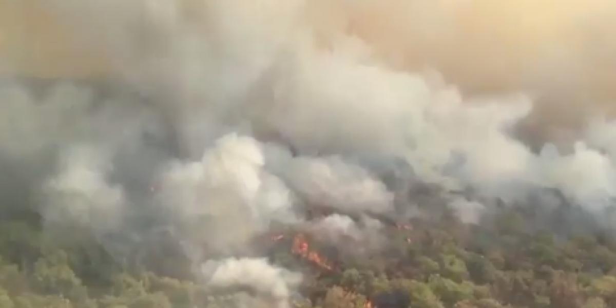 Autoridades de Jalisco intentan controlar incendio en bosque La Primavera