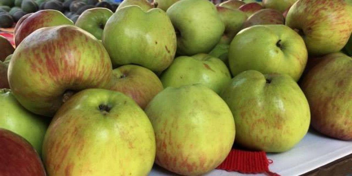 ¡A comer frutas para mejorar la salud!