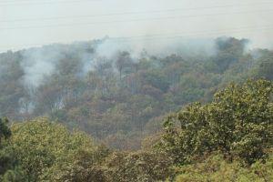 Jalisco mantiene suspensión de clases por emergencia atmosférica