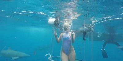 Tiburón hiere a actriz porno cuando grababa sensual video en el mar