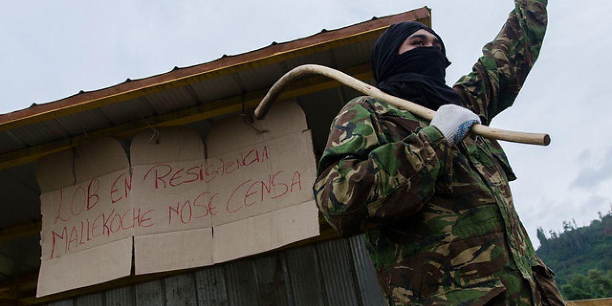 Encuesta de la UC revela que 77% de los mapuches rechaza ataques incendiarios