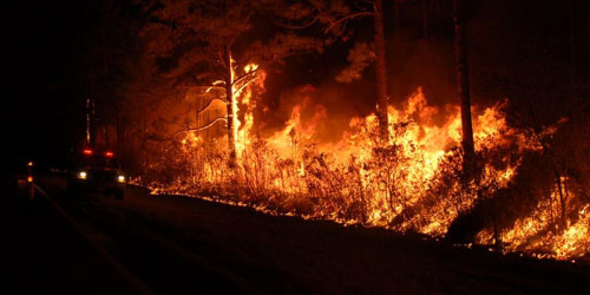 Incendio forestal provoca desalojo de comunidad en Georgia