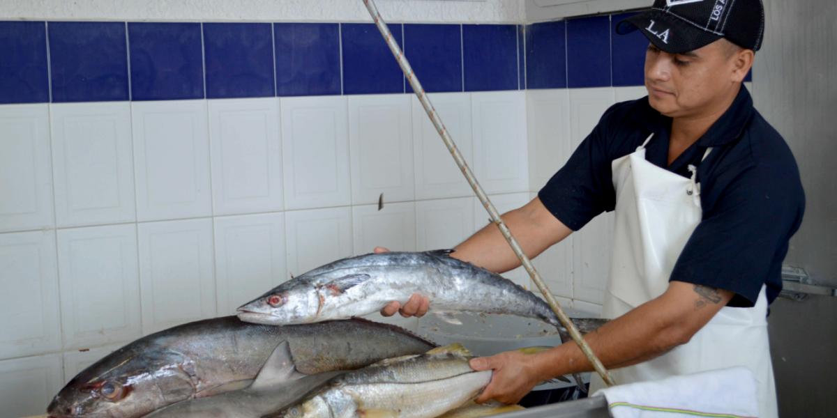 Crece producción agropecuaria y pesquera: Sagarpa
