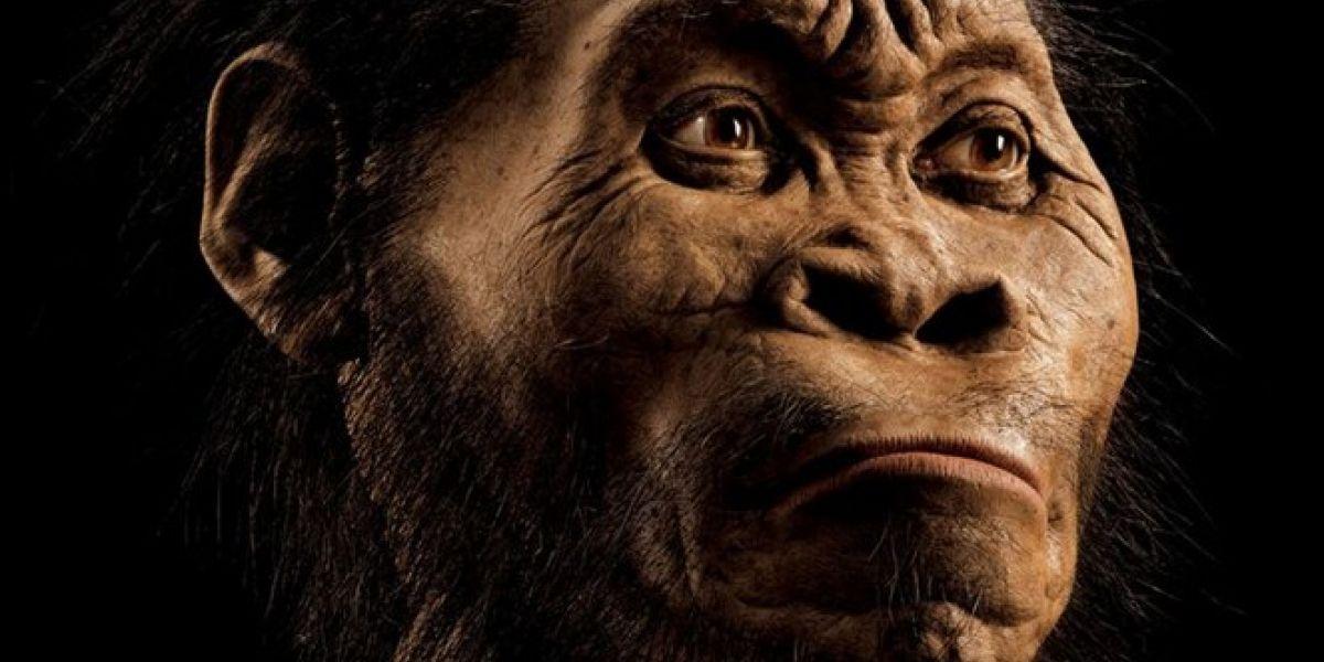 Homo naledi: revelan nuevos datos que cambian la historia de la especie humana ancestral