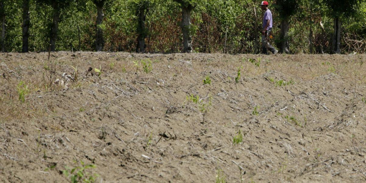 Políticos y empresarios, en la mira de la Contraloría por la compra irregular de tierras