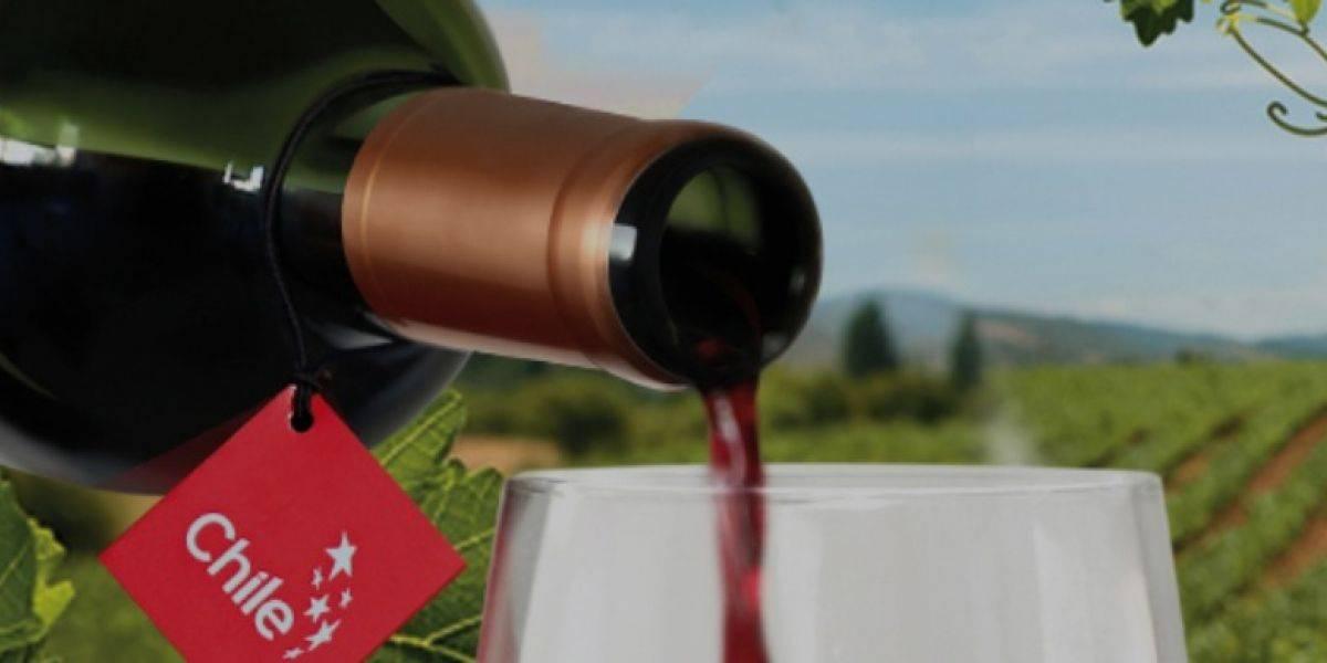 """Productos chilenos usan el sello """"Chile"""" para promocionarse en el extranjero"""
