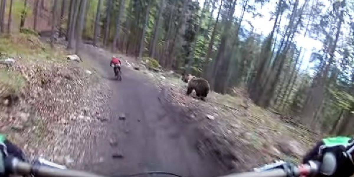 VIDEO: Ciclista es perseguido por un oso