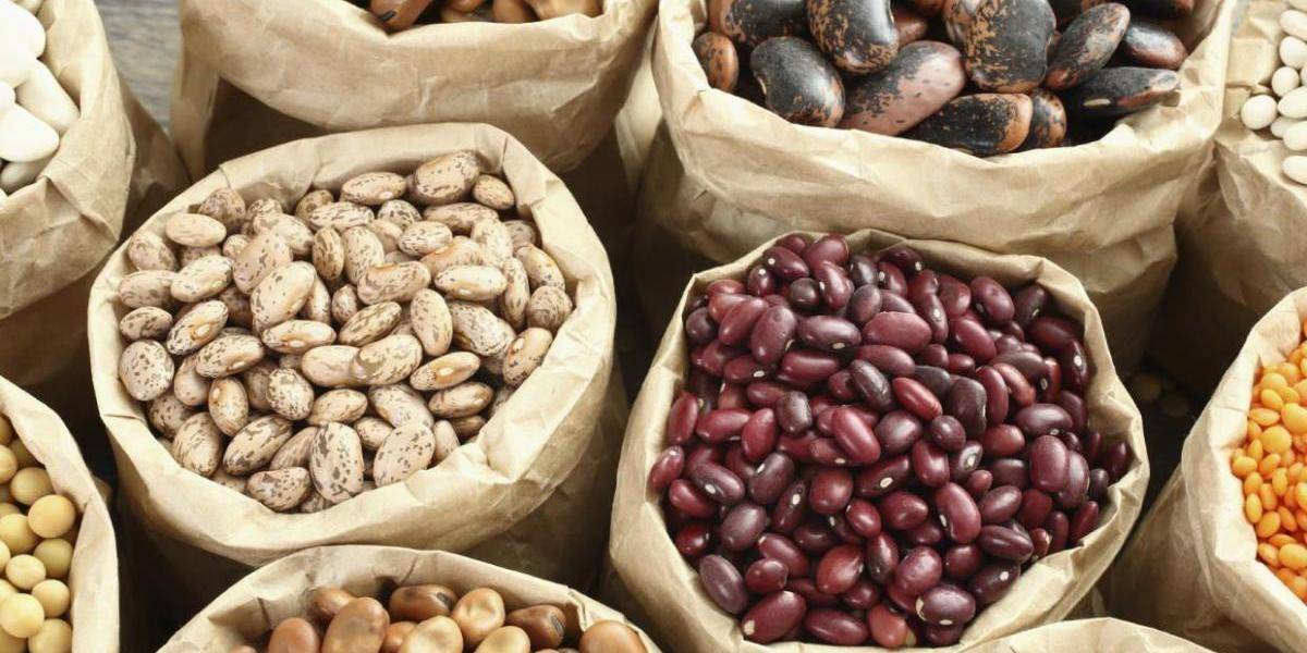 Acusan a ministro de Agricultura dar licencias a grupo monopólico