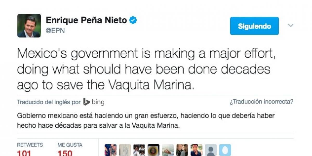 Peña Nieto responde a Leonardo DiCaprio sobre vaquita marina