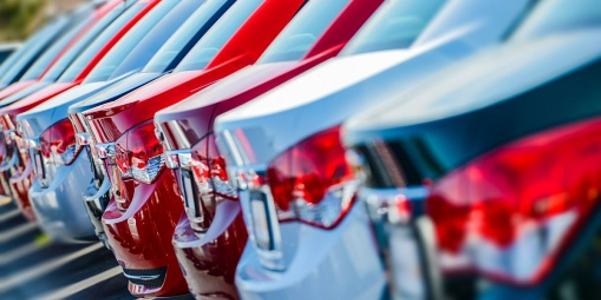 Radican proyecto para regular autos reposeídos