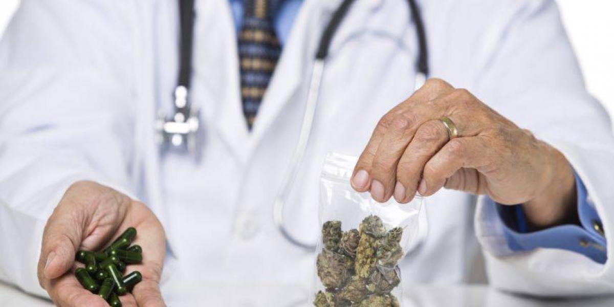 Crece en el sur la industria de cannabis medicinal