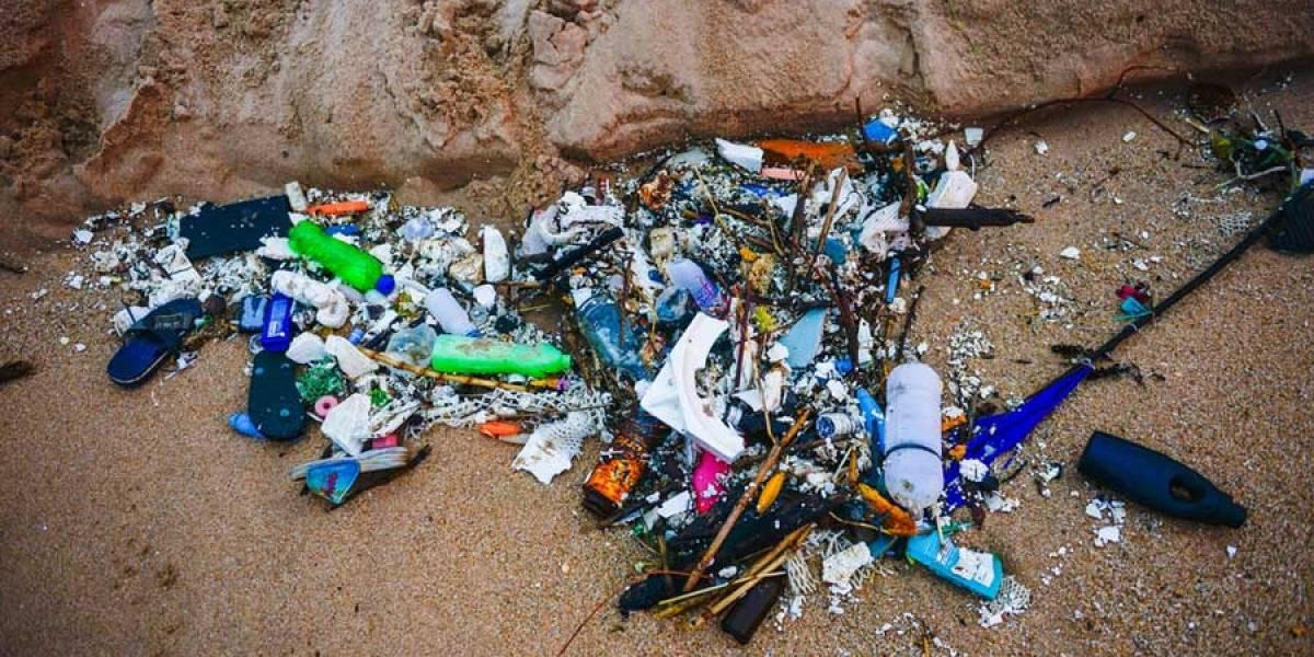 Organizan campaña de limpieza de la playa de El Paredón