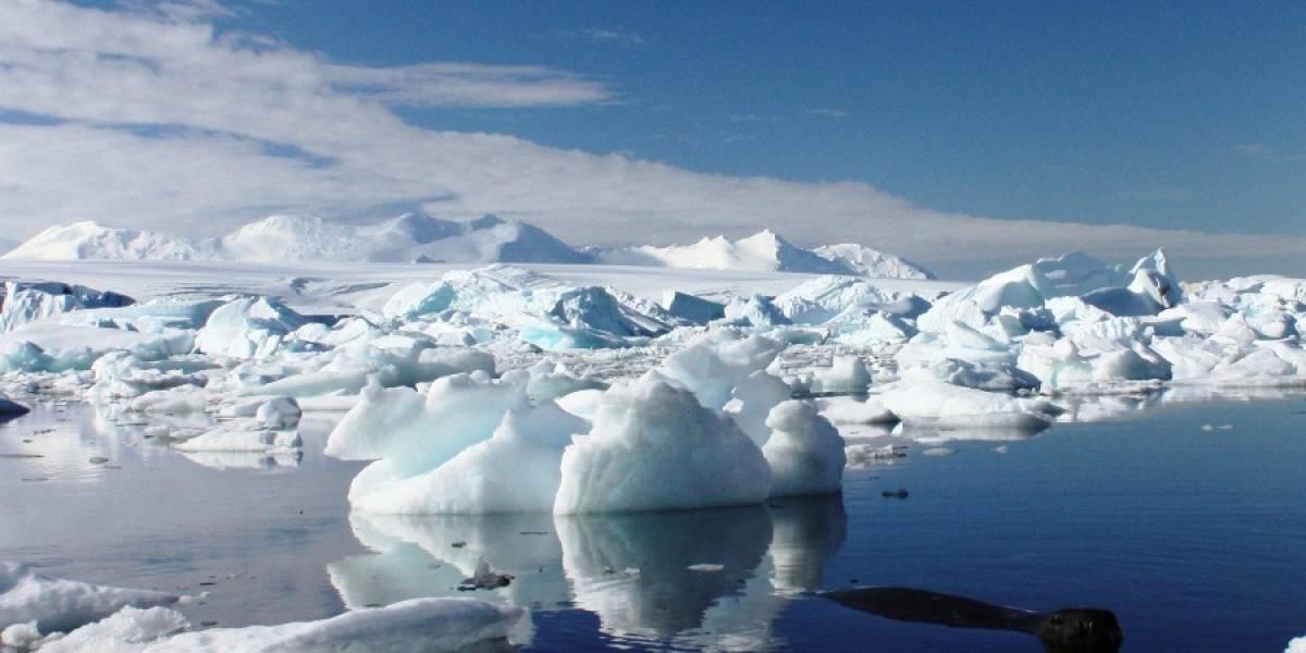 Restos de una ballenera fantasma yacen en el corazón de la Antártida
