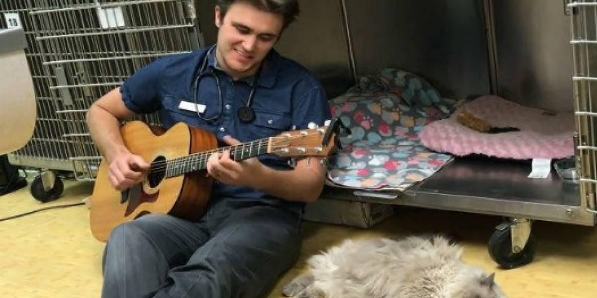 La historia del veterinario que le da serenata a las mascotas enfermas y que conmovió al mundo