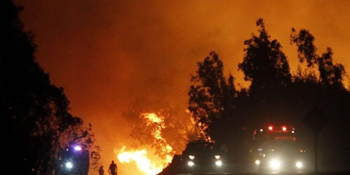 Aseguradoras desembolsan US$100 millones por indeminizaciones tras incendios forestales