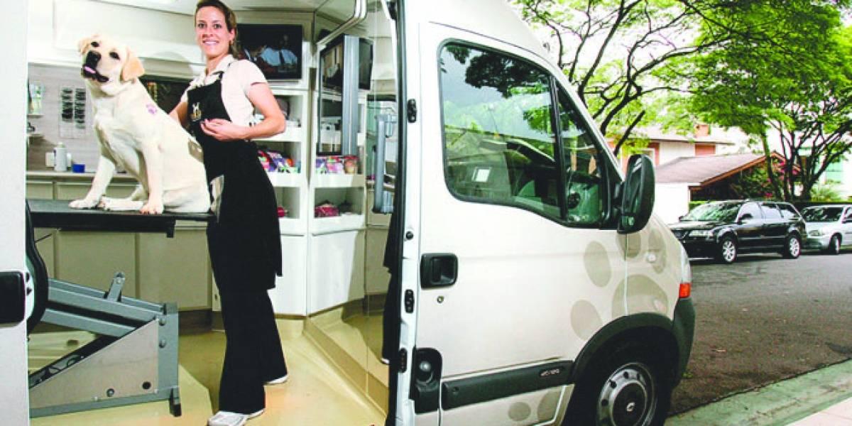 Mulheres transformam utilitários em pet shops móveis e lojas sobre rodas para empreender