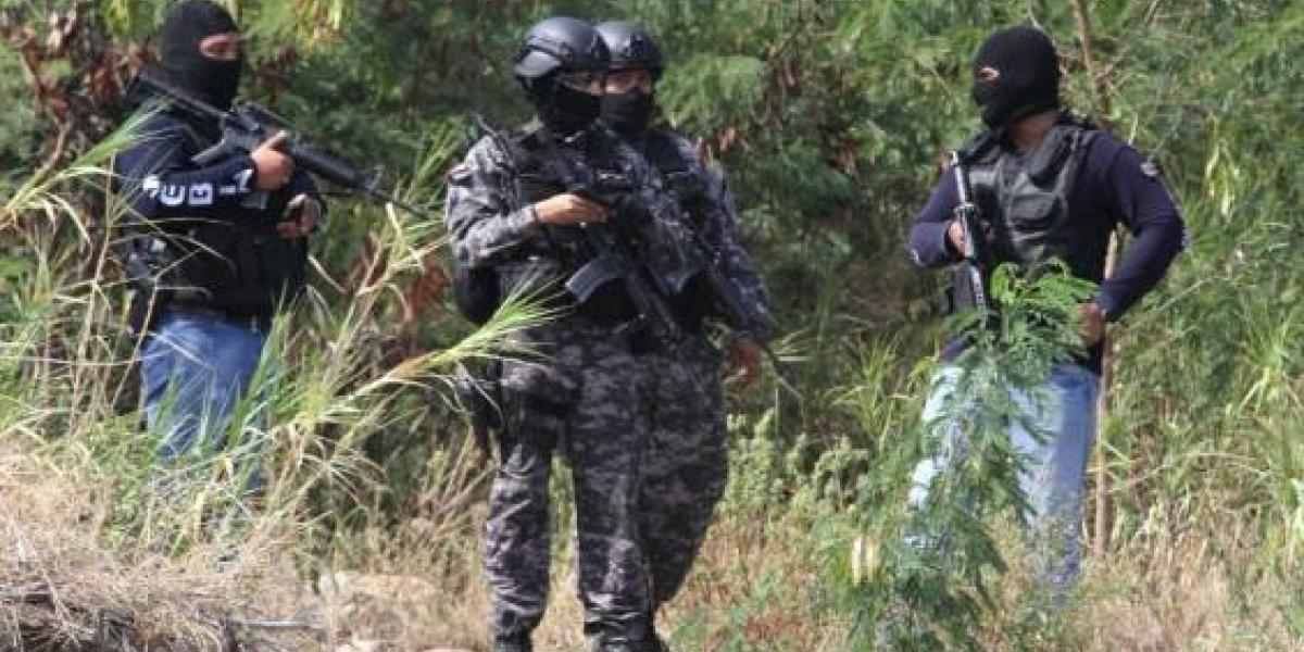 Los grupos paramilitares del chavismo que causan caos y miedo en Venezuela