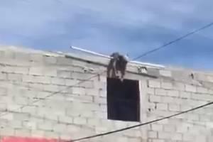 Captan momento exacto en que joven muere electrocutado en Saltillo