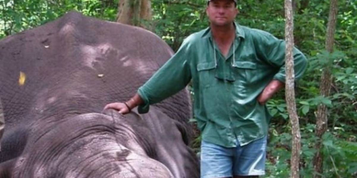 Elefante aplasta y mata a cazador que había disparado a sus crías durante safari en África
