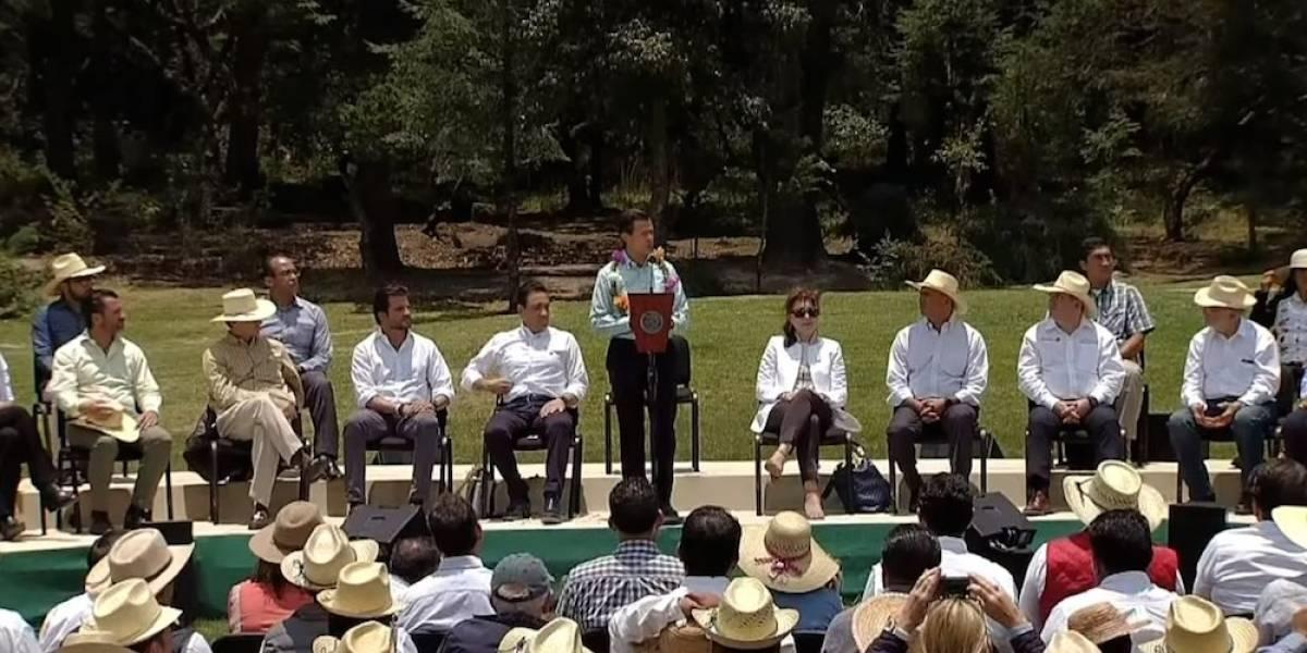 Instruye Peña a crear leyes para armonizar turismo, agricultura y cuidado a la biodiversidad