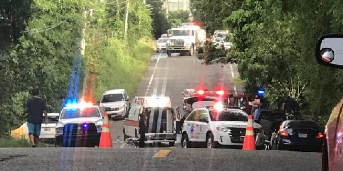 Conductor muere tras volcarse su auto en Juncos