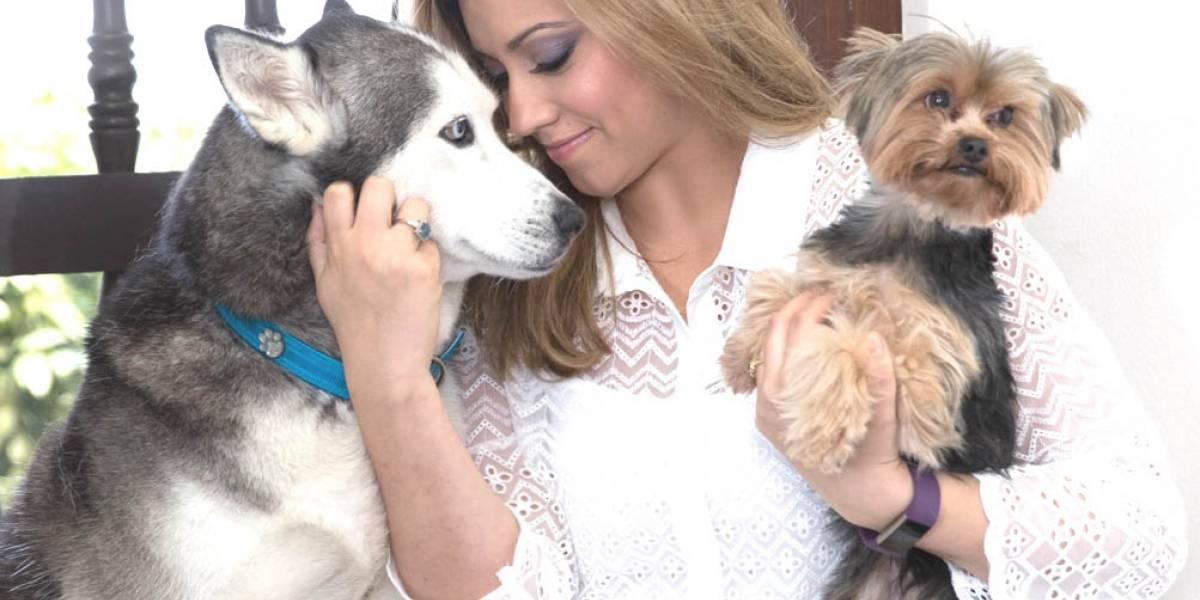Primera Dama anuncia cumbre por el bienestar de los animales