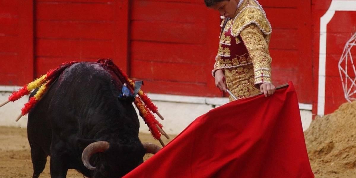 Se confirma fecha de la consulta antitaurina — Bogotá