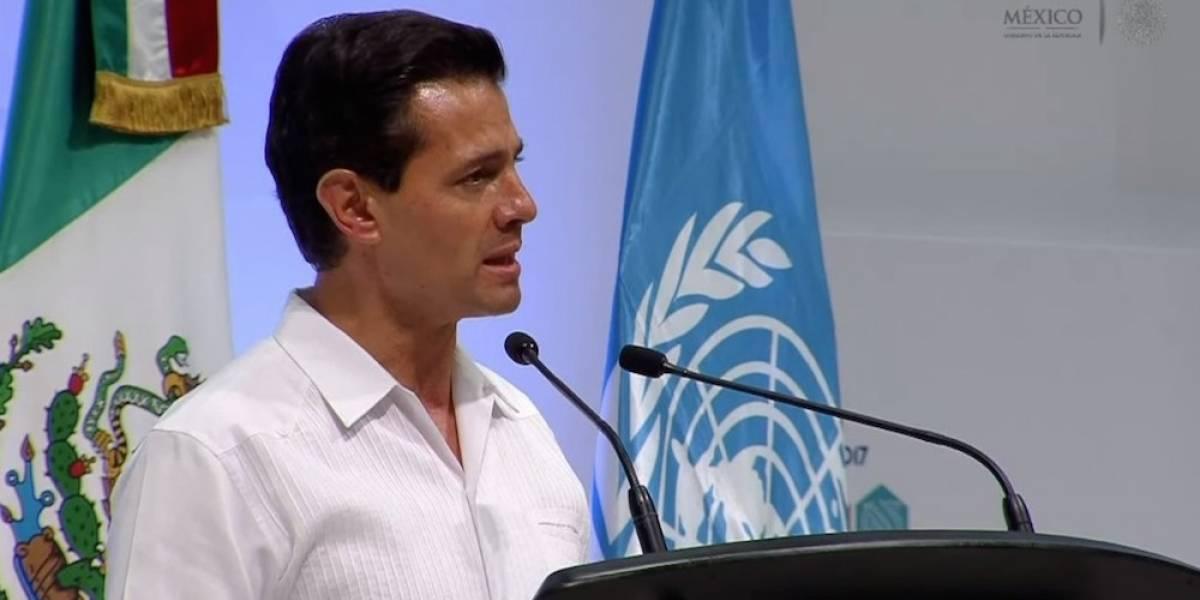 Envía Papa Francisco carta de apoyo a Peña Nieto