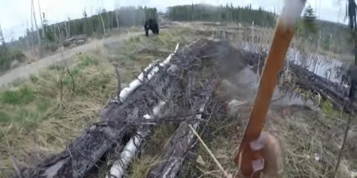 El aterrador momento en que un cazador es atacado por un gigantesco oso y vive para contarlo
