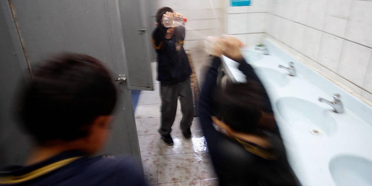 """Superintendencia de Educación aclara que """"no exige"""" baños mixtos en colegios por niños trans"""