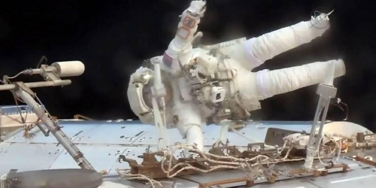Científicos descubren extraña bacteria mutante a bordo de la Estación Espacial Internacional