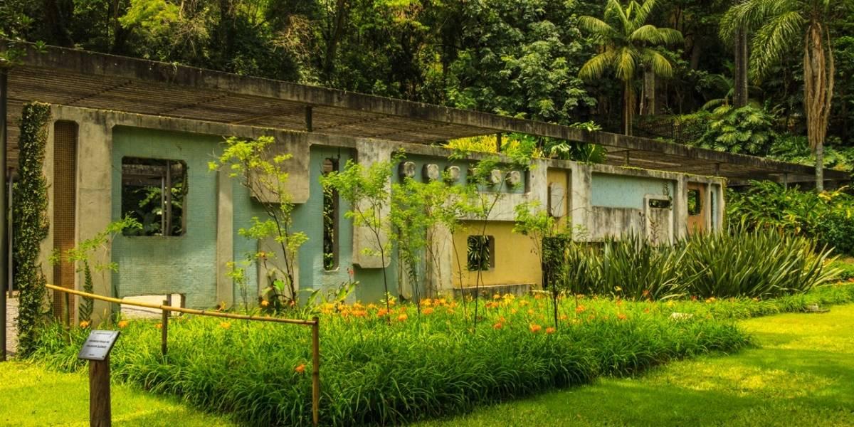 Parque Burle Marx doa alimentos da horta à população