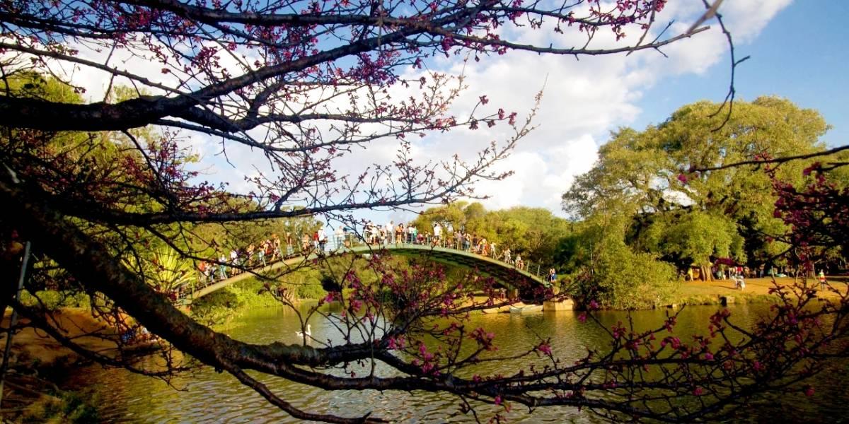 Prefeitura de São Paulo assina contrato de concessão do parque Ibirapuera