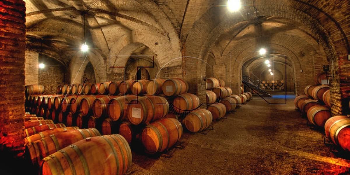 Mayor vitivinícola china firma acuerdo con grupo Bethia para comprar tres viñas