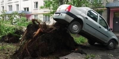 Unos 11 muertos y 70 heridos deja temporal en Moscú