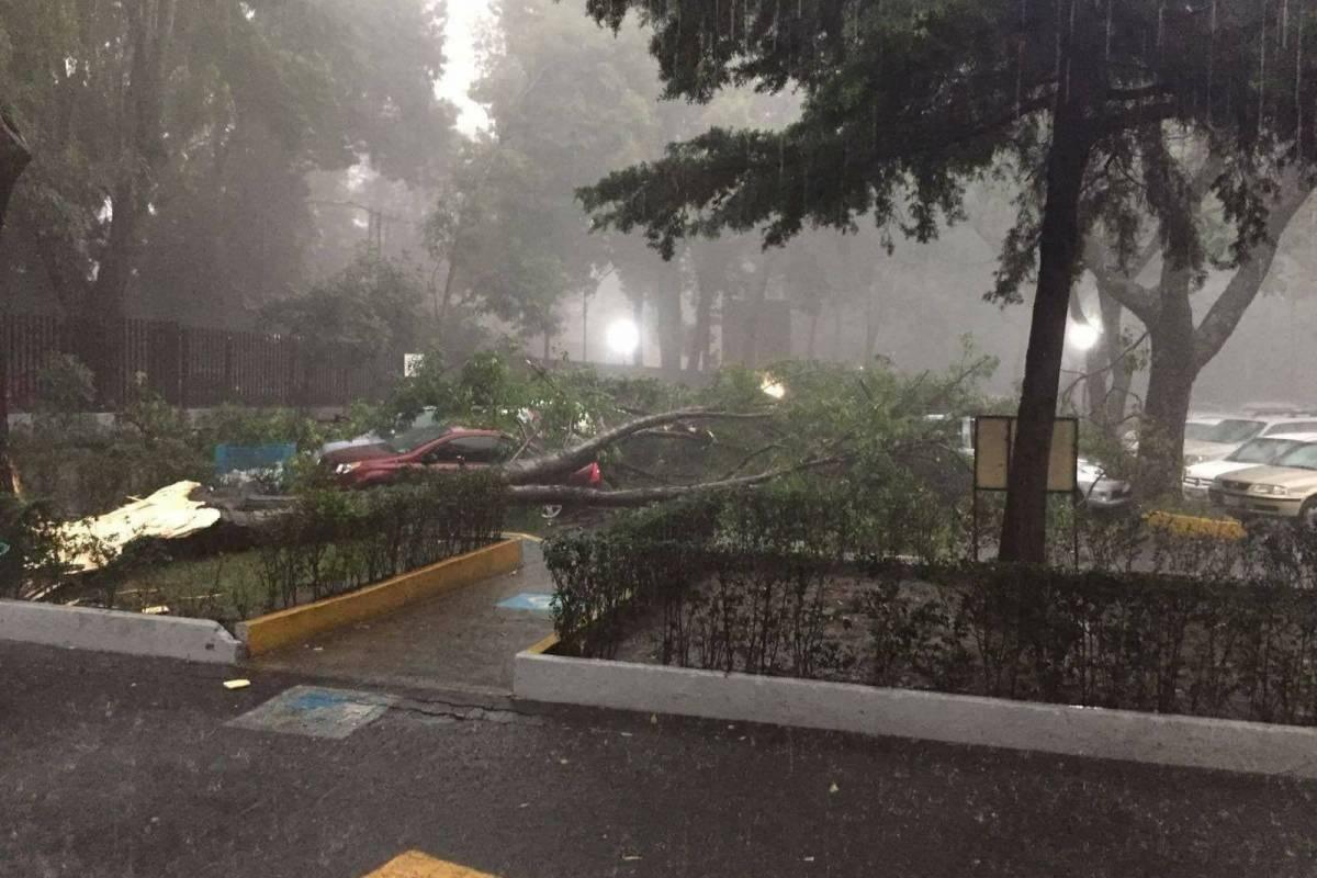 Foto: Xochimilco DF