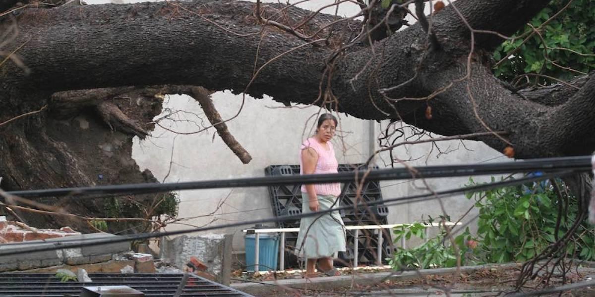 Fuertes lluvias dejan dos muertos y suspensión de clases en Oaxaca