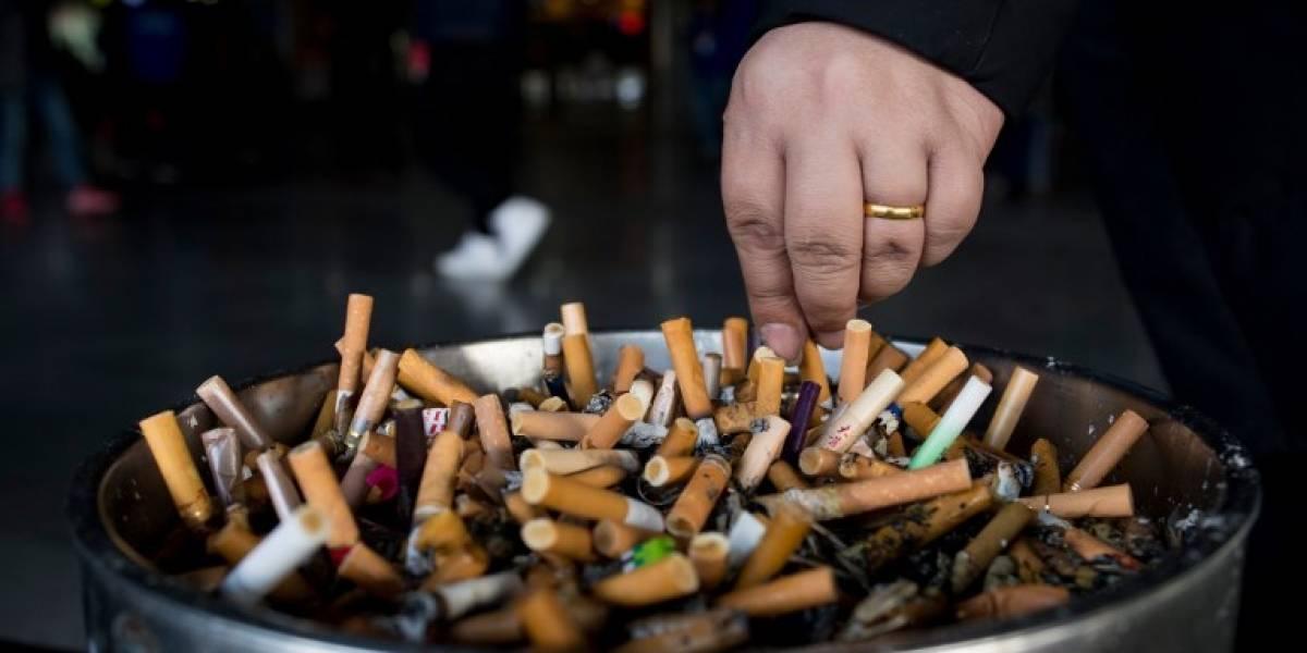 OMS: el tabaco mata a 7 millones de personas cada año
