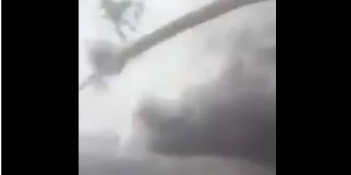 VIDEO: Tornado sorprende a pobladores de Riva Palacio, Chihuahua