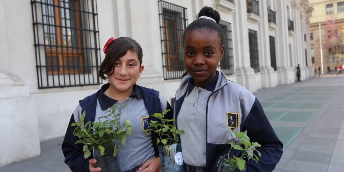 Destacan a 70 colegios por su sello medioambientalista