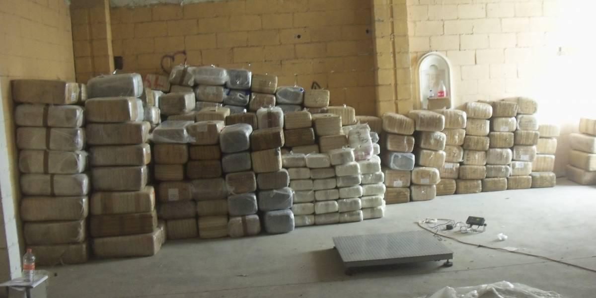 Federales destruyen casi 150 toneladas de marihuana en Jalisco
