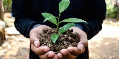 Uruguay celebra el Día Mundial del Medio Ambiente