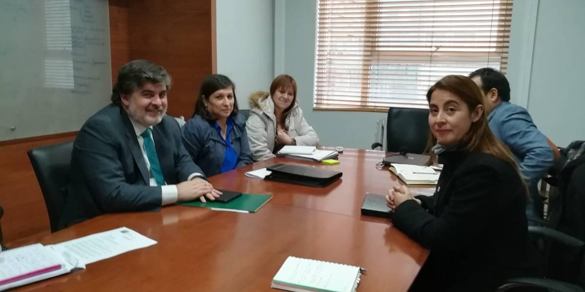 Colegio de Kinesiólogos y subsecretario de Salud discutieron el ingreso de la profesión al Código Sanitario